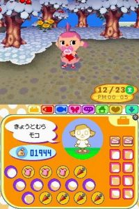 Animal Crossing Wild World Gameplay 1